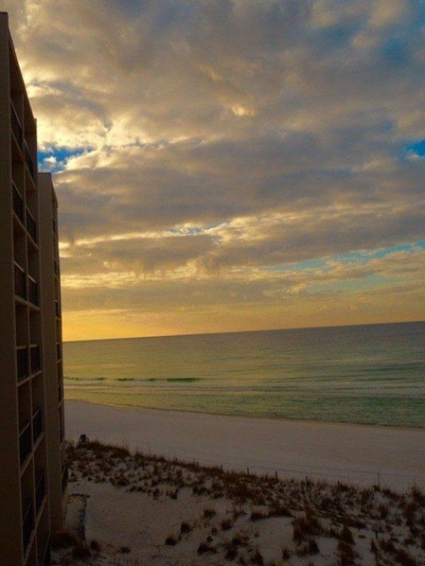 Beach condo rentals pinnacle port